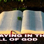 Praying in the will of God, How should we pray according to the will of God?