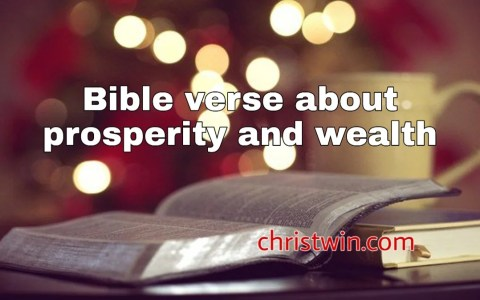 bible verse about prosperity and wealth