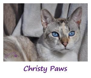 Christy for sidebar