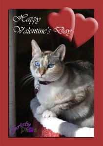 Christy's Valentine copy