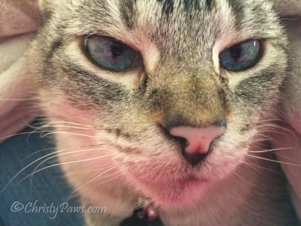 Sunday Selfies: Pink Reflection