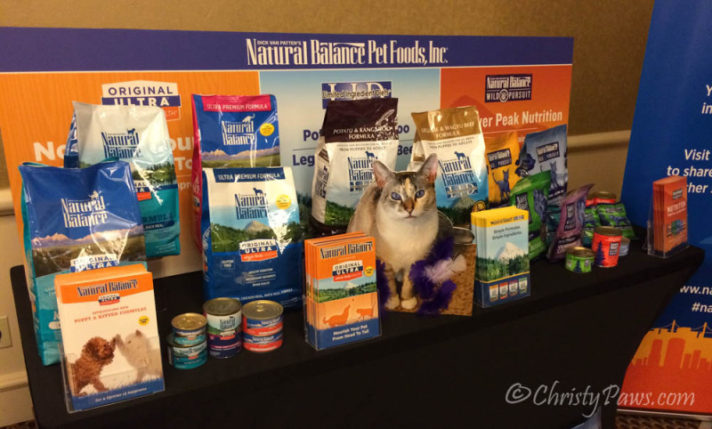 Flat Me on the Job at BlogPaws - Grain free canned food, a raw diet alternative