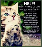 A-Pal Humane Society Won't You Help Us Poster