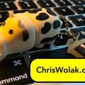 cow thumb drive sitting on a keyboard