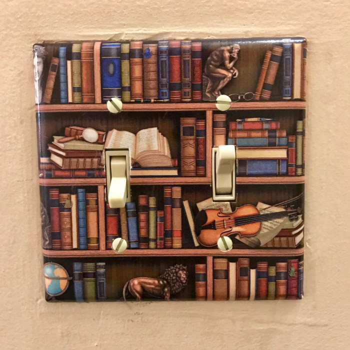 Light switch plate envy