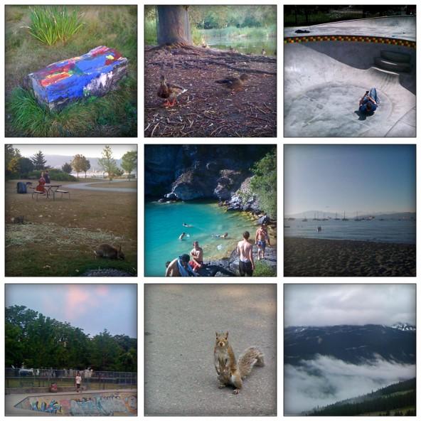 painted log, ducks, filming at the Kensington skatepark, bunnies at Jericho, Kalamalka Lake, Jericho Beach, pink sky at Hastings skatepark, squirrel, Whistler mountain