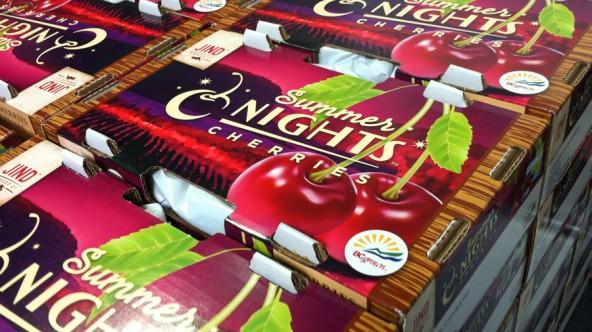 Jind Fruit Co. Summer Nights Cherries™ Export box