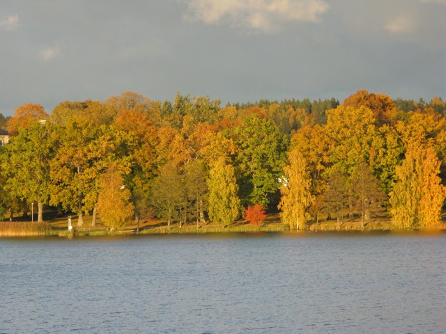 Autumn on the other side