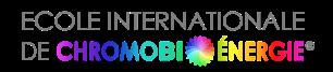 logo_EICBEfrancais