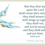 Blue birds in flight with the words of Isaiah 40:31