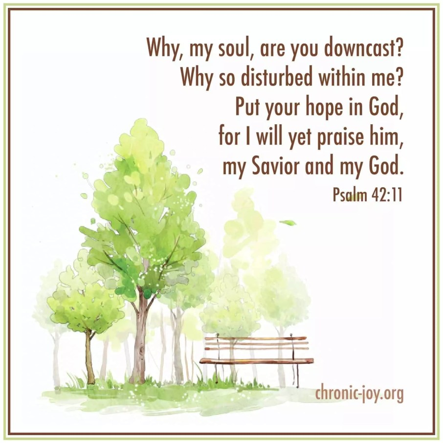 Why, my soul are you downcast? ~ Psalm 42:11