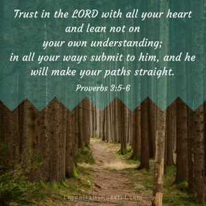 Trust in the Lord, Prov 3,5-6