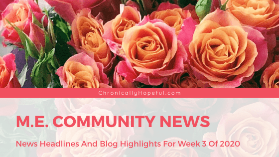 A bunch of coral roses, title reads ME Community News. News Headlines and Blog Hightlighs, Week 3