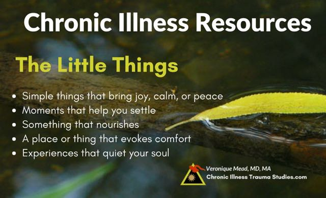Chronic illness resources many of these are little things. they bring calm, or peace or joy; make you want to sing. help you feel calm, nourished or comforted. They don't have to be big to support healing the nervous system. #mecfs #chronicfatigue #type1diabetes #RA #rheumatoidarthritis #asthma #fibromyalgia #lupus