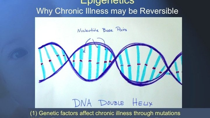 Epigenetics and chronic Illness: How life experiences such as stress, trauma and adverse events affect our genes and influence our health