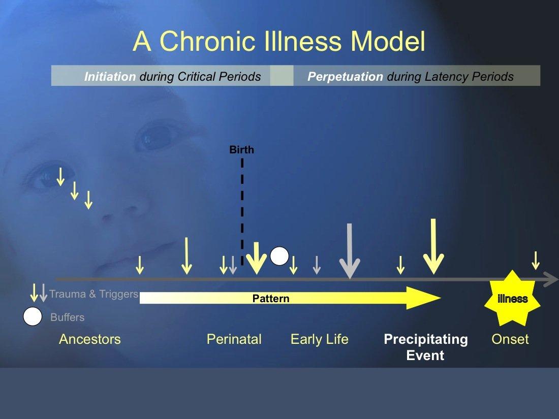 The Trauma and Chronic Illness Model: A Summary of the Science