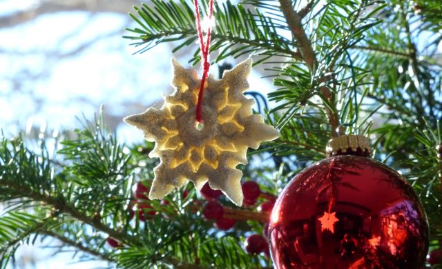 A homemade star from a friend and her daughter for our chronic illness christmas tree a special gift of the holidays #me/cfs #fibromyalgia #ibd #ra #asthma #autoimmune