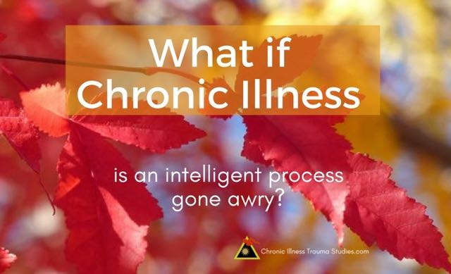 "trauma and autoimmune disease: What if chronic disease is an intelligent process gone awry rather than something that is broken or autoimmune process of self-attack by ""mistake""? #autoimmunedisease #t1d #metabolicsyndrome #hypertension #asthma #mecfs #fibromyalgia #MS #lupus #RA #IBD"