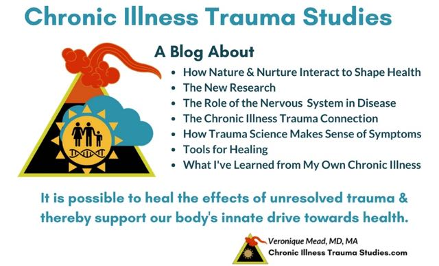 Essential Guide to Chronic Illness, Trauma and The Nervous