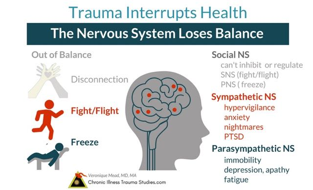 Trauma affects chronic illness by interrupting nervous system balance and fight, flight, freeze. Symptoms include hypervigilance, PTSD, fatigue, depression, anxiety, nightmares and more. #autoimmune #chronicillness #me/cfs #ra #rd #ms #ibd #fibromyalgia #parkinson's #alzheimer's #IBD Chronic Illness Trauma Studies (CITS) _Mead