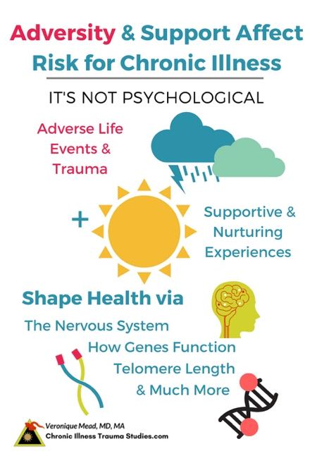 Adversity and Trauma Increase risk for chronic illness through epigenetics, telomeres, the nervous system and more. It's not psychological or all in your head. #autoimmune #chronicillness #me/cfs #ra #rd #ms #ibd #fibromyalgia #parkinson's #alzheimer's #IBD Chronic Illness Trauma Studies (CITS) _Mead