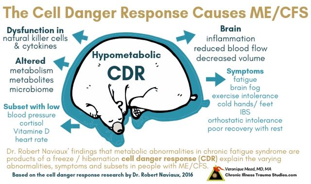Chronic Fatigue Syndrome awareness day - looking at underlying causes and why it's not in your head - the cell danger response and how the CDR gets stuck to cause symptoms of exhaustion, brain fog and brain fuzz, natural killer cell dysfunction, altered blood pressure and more CITS_Mead