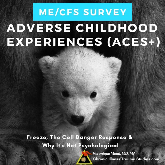 Expanded ACEs+ survey Adverse childhood experiences (ACEs) are risk factors for disease because they can prolong the cell danger response. When the CDR gets stuck our bodies can get caught in freeze, hibernation, fight or flight and increased risk for disease #me/cfs #chronicfatiguesyndrome #RA #lupus #asthma #diabetes Mead CITS #questionnaire