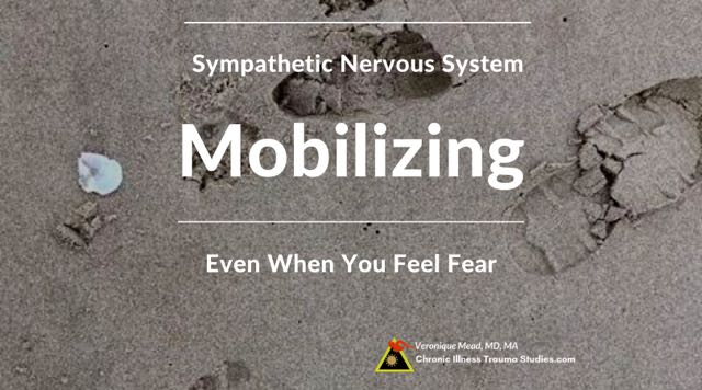 Mobilizing in fight flight can trigger fear and other symptoms Here's how to work with it to keep going Mead CITS
