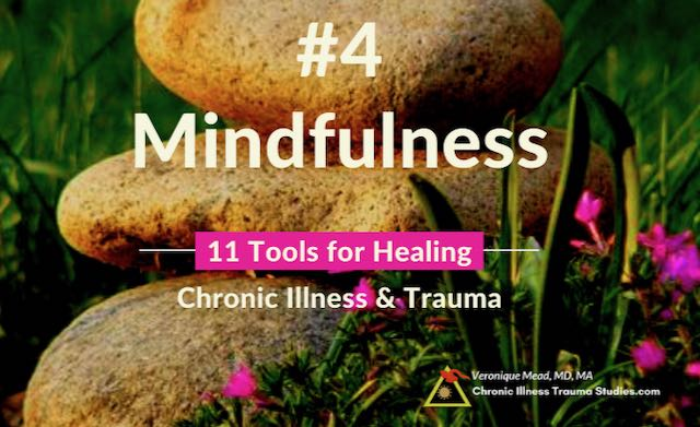 Healing Chronic Illness MIndfulness Mead CITS