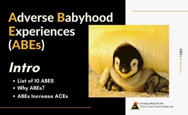 Introduction to 10 ABEs Categories Mead CITS