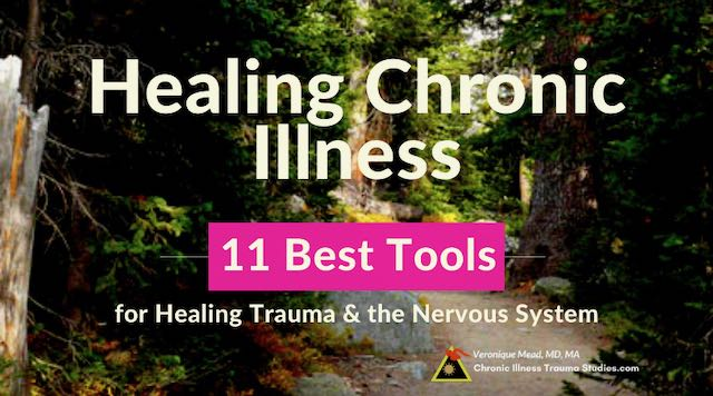 Healing Chronic Illness Trauma Nervous System Mead CITS