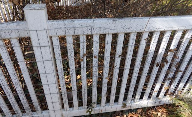 Healing Severe Food Intolerances and cleaning fence as a metaphor for Boundaries No Carbs Mead CITS