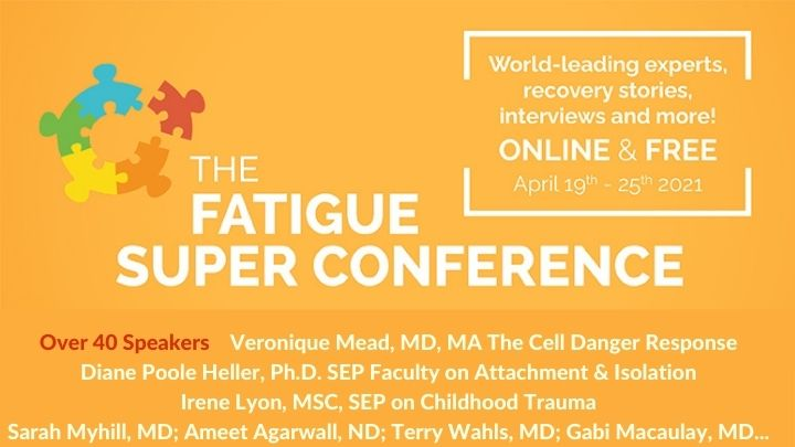 Fatigue Super Conference 2021 Mead