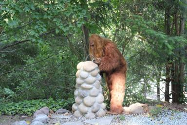 Daniel Oster as Bigfoot Drinking from a Fountain