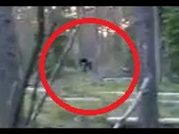 Russian hopping Bigfoot