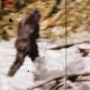 """Patty from """"What if Bigfoot Actually Exists?"""""""
