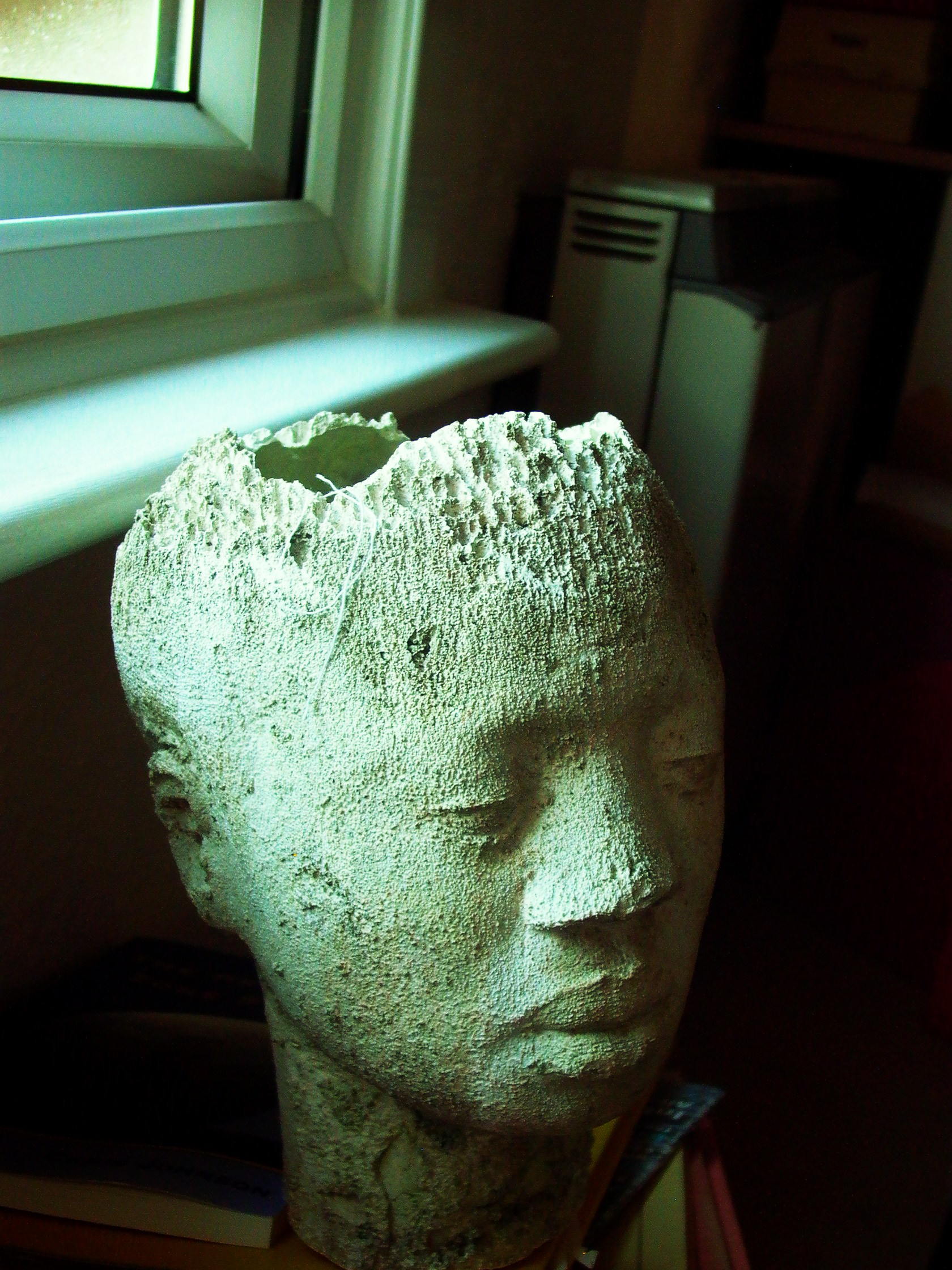 myrtle african headRotation of Leica 25April 2004--6  vanHage 017