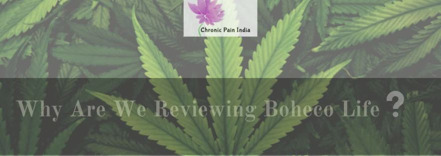 Why are we reviewing BOHECO Life?