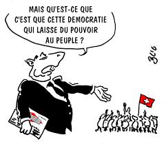 Les intellectuels français méprisent la démocratie directe.