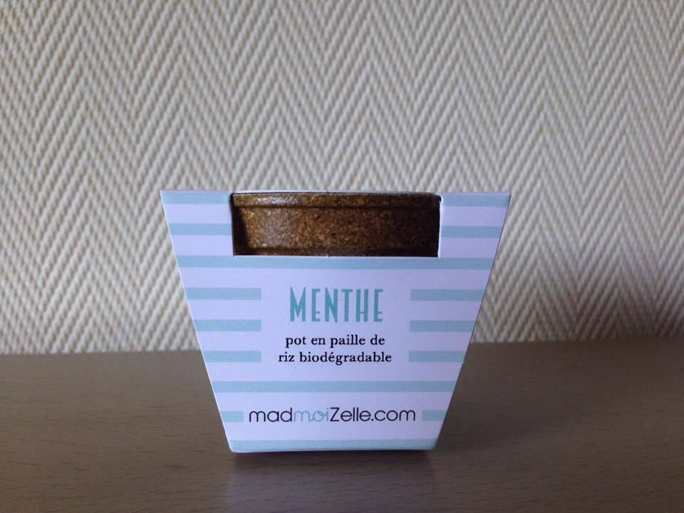 MadBox-mint