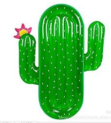 bouée cactus