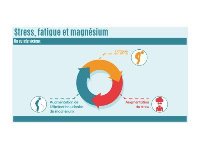 stress et magnésium