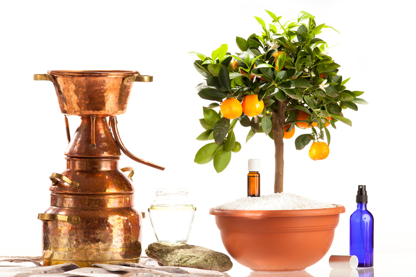 hydrolat aromatique, distillation
