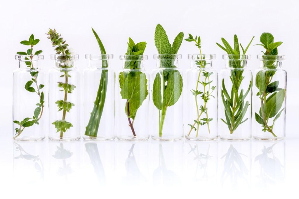 Prenez soin de votre santé naturellement et simplement avec les huiles essentielles, les plantes et une nutrition saine