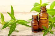 L'huile essentielle de verveine citronnée est idéale en cas d'insomnie, particulièrement chez les enfants