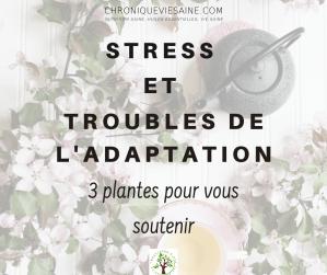 Stress et troubles de l'adaptation : la phytothérapie à la rescousse
