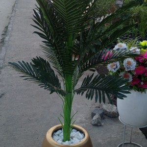 Buy artificial Areca Palm in Lagos