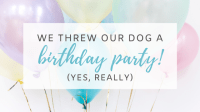 We Threw Our Dog a Birthday Party! (Yes, Really)