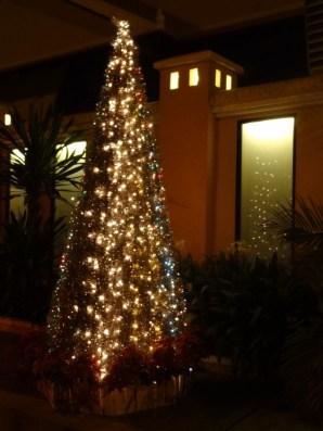 christmas tree by night