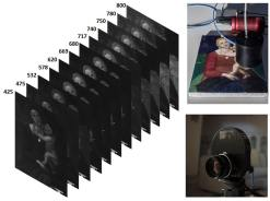 multispectral imaging